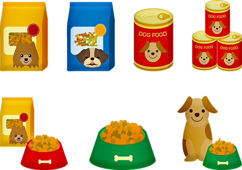 Odpowiedzialne odżywianie psa